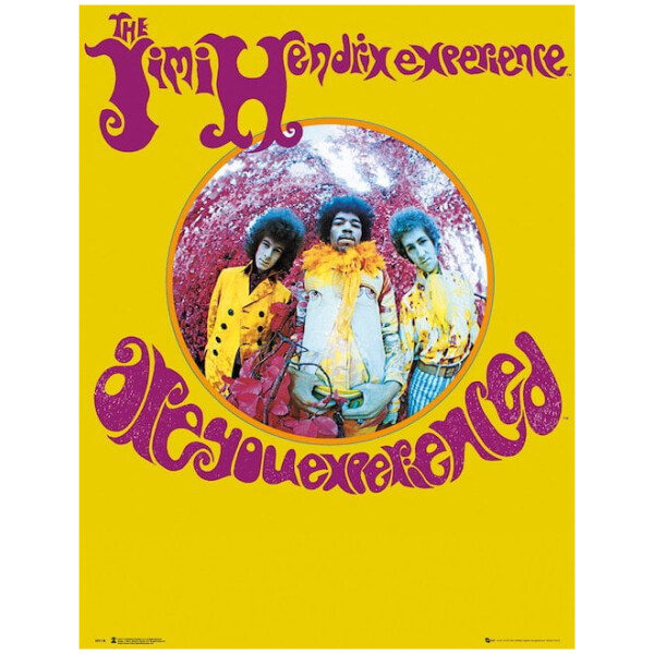 Jimi Hendrix Are you Experienced