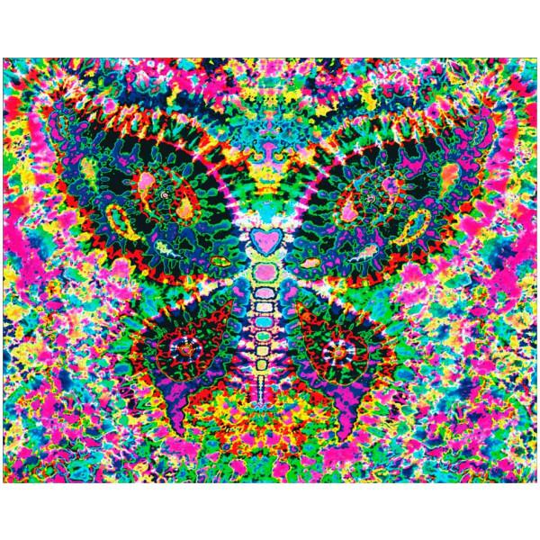 Tie Dye Tapestry Fractal Butterfly