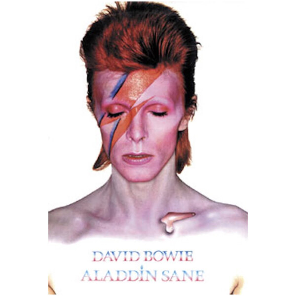 David Bowie Aladdin Poster